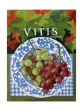 Vitus (Grapes), 2014 Giclee Print by Jennifer Abbott
