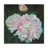 First Blooms, 2012 Giclee Print by Helen White