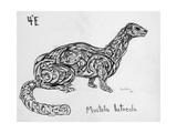 4E European Mink, 2009 Giclee Print by Xavier Cortada
