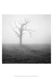 Misty Weather II Prints by Martin Henson