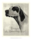Brague du Bourbonnais Giclee Print