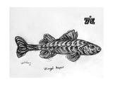 7E Asper, 2009 Giclee Print by Xavier Cortada