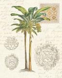 Vintage Palm Study I Poster af Hugo Wild