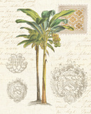 Vintage Palm Study I Poster by Hugo Wild