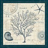 Ocean Life IV Prints by  Pela