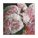 Peonies, 2010 Giclee Print by Helen White