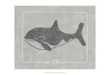Whale of a Tale II Posters by Chariklia Zarris