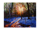 Sunset on Snow, 2010 Giclee Print by Helen White