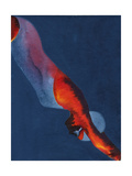 Diver 2 Giclee Print by Graham Dean