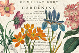 Botany Posters by Sue Schlabach