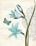 Lila Bleu II Posters av Katie Pertiet