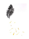 Feather {Fay-Erie Dust}, 2014 Giclee Print by Bella Larsson