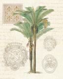 Vintage Palm Study II Plakater af Hugo Wild