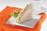 Vegetable & Chicken Sandwich Photographic Print by  highviews