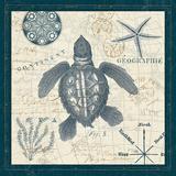 Ocean Life VI Posters by  Pela