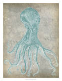 Spa Octopus II Giclee Print by Jennifer Goldberger