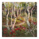 Four Seasons Aspens I Giclee Print by Nanette Oleson