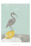 Heron Collage II Prints by Jennifer Goldberger