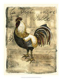 Tuscany Rooster II Giclee Print by D. Bookman