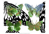 Layered Butterflies V Prints by Sisa Jasper
