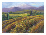 Vineyard Tapestry I Giclee Print by Nanette Oleson