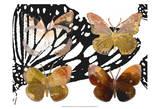 Layered Butterflies III Prints by Sisa Jasper