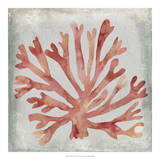 Watercolor Coral III Giclee Print by Megan Meagher