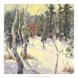 Four Seasons Aspens IV Giclee Print by Nanette Oleson