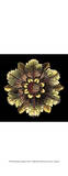 Rosette on Black I Art by DaCarlo Antonini