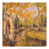 Four Seasons Aspens III Giclee Print by Nanette Oleson
