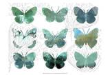 Layered Butterflies I Prints by Sisa Jasper