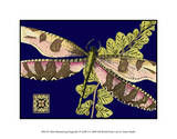 Mini Shimmering Dragonfly IV Giclee Print