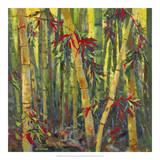 Bamboo Grove I Giclee Print by Nanette Oleson