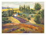 Vineyard Tapestry II Giclee Print by Nanette Oleson