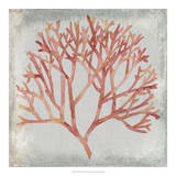 Watercolor Coral IV Giclee Print by Megan Meagher