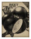 Vintage Seed Pack III Giclee Print