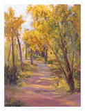Cottonwoods Calling Giclee Print by Nanette Oleson