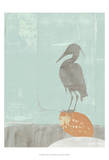 Heron Collage I Poster by Jennifer Goldberger