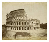 The Colosseum Giclee Print by Giacomo Brogi