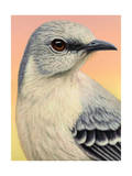Mocking Bird Giclee Print by James W. Johnson