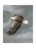 In Flight Gicléetryck av Trevor V. Swanson