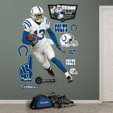TY Hilton Wall Decal