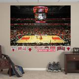 Chicago Bulls Arena Mural Wall Mural