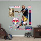 Thierry Henry Wall Decal