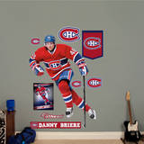 Danny Briere Wall Decal