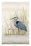 Heron Sanctuary II Giclee Print by Tim