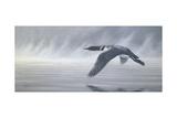 Vol dans la brume Impression giclée par Wilhelm Goebel