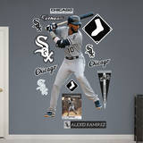 Alexei Ramirez Wall Decal