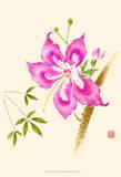 Hibiscus Flower II Print by Nan Rae