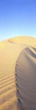 Mungo Dune Vert Photographic Print by Wayne Bradbury